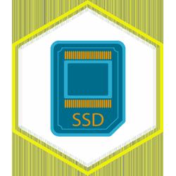 Ổ cứng Lưu trữ SSD
